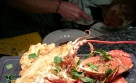 lobster_atlantic
